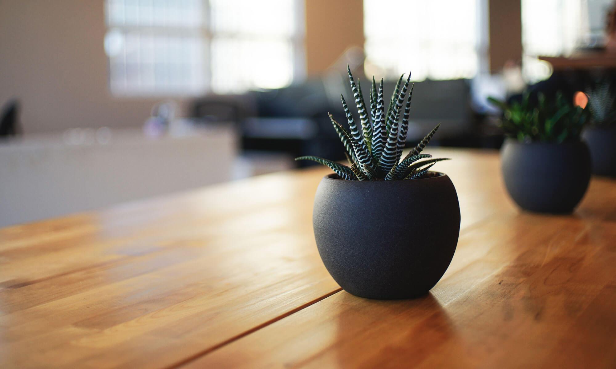 Home Sweet Home | Modern Livingroom