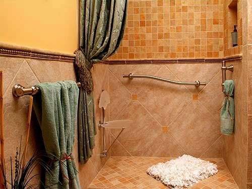 fancy bathroom safety bars image-Amazing Bathroom Safety Bars Ideas