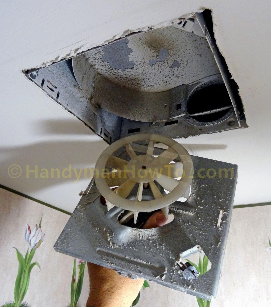fresh bathroom exhaust fan motor design-Amazing Bathroom Exhaust Fan Motor Photograph