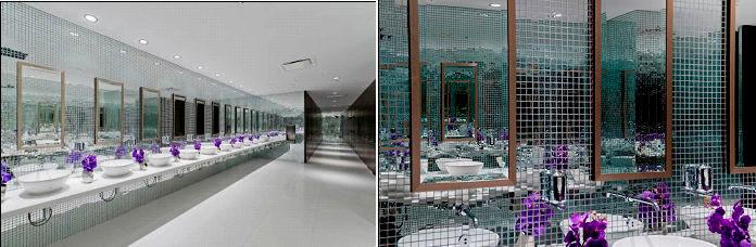 superb bathroom design ideas portrait-Amazing Bathroom Design Ideas Model