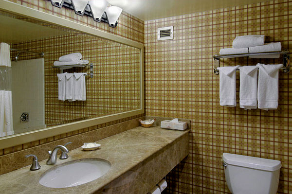 excellent handicap bars for bathroom décor-Top Handicap Bars for Bathroom Pattern