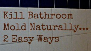 How to Get Rid Of Mold In the Bathroom Beautiful How to Get Rid Of Bathroom Mold Naturally 2 Ways to Kill Bathroom Photograph