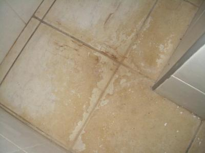 Best Way To Clean Bathroom Tile Floor