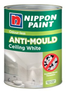 Mould Resistant Paint For Bathroom Ceiling