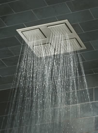 Kohler Rain Shower Head