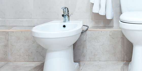 Bathroom-What are Bidets and Bidet Toilet Seats