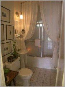 Glass Shower Door Or Curtain